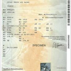 Rejestracja samochodu z Francji – procedura, dokumenty